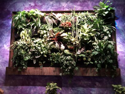 Electric Garden Living Wall