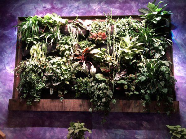 Electric Garden Living Wall